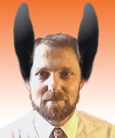 donkey_adauto.jpg