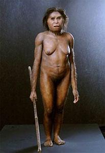 homo_florensiensis