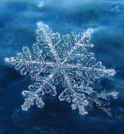 snow_flake