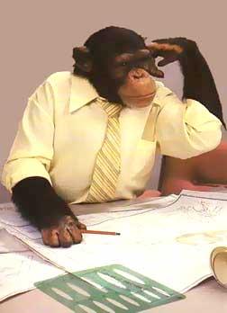 homem_macaco