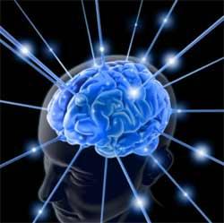 conexao_cerebro
